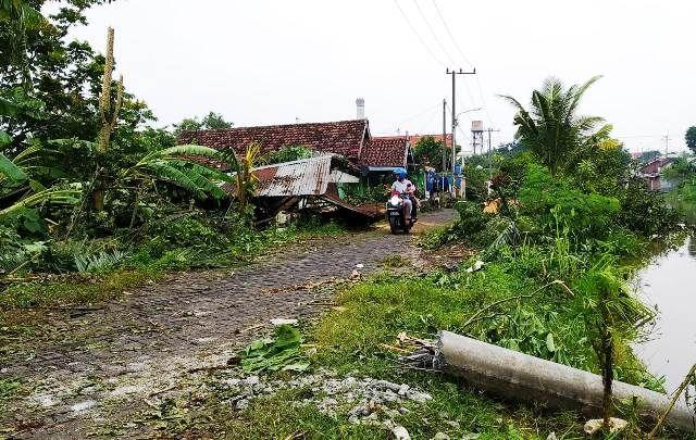 BERANTAKAN: Sejumlah rumah yang rusak serta pohon dan tiang listrik yang tumbang akibat angin puting beliung di Desa Temu, Prambon.