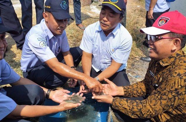 PANEN: Para pejabat Dinas Kelautan dan Perikanan (DKP) sedang memegang hasil tangkapan udang.