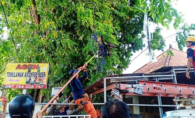 SIAL: Petugas dari Linmas Kota Surabaya membantu menurunkan seorang peterjun yang tersangkut di pohon.