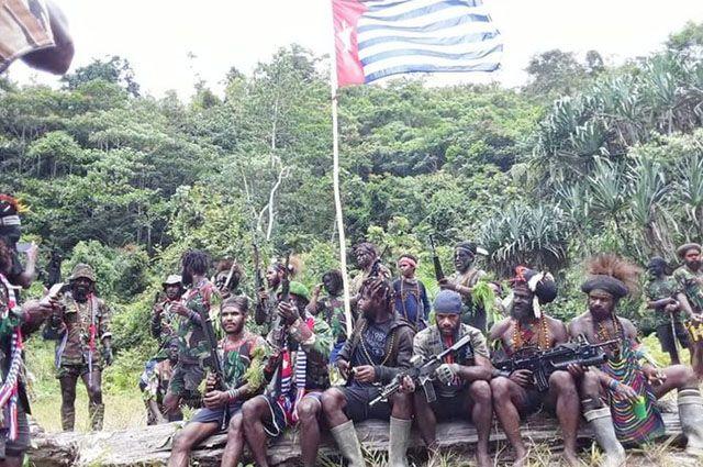DPR Dukung TNI-Polri Tumpas KKB di Papua