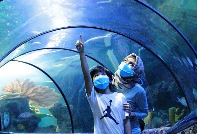 SEA WORLD, salah satu destinasi wisata yang banyak digemari saat kunjungan ke ibu kota Jakarta.
