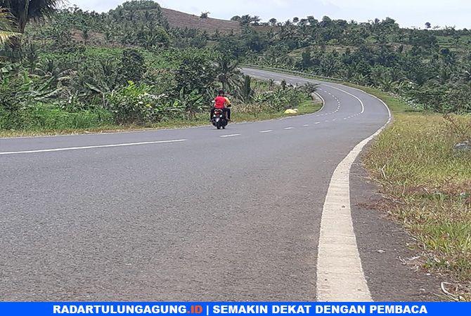 KONEKSIKAN ANTARDAERAH: Salah satu ruas JLS di dekat Pantai Gemah, Desa Keboireng, Kecamatan Besuki.