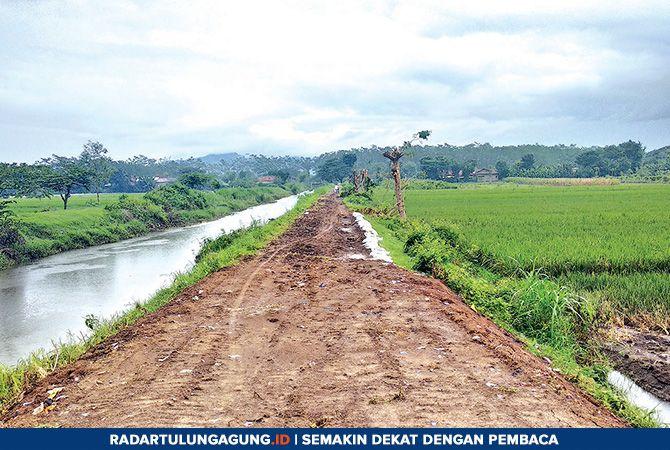 BENAHI : Tanggul yang jebol di Desa Waung, Kecamatan Tulungagung, akibat banjir awal Maret lalu, kini sudah ditutup.