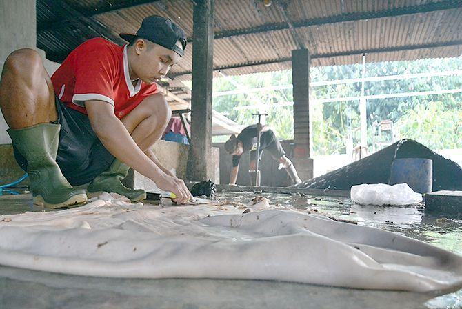TERUS PRODUKTIF: Seorang pekerja sedang memproses kulit di wilayah Kademangan.