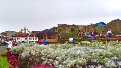 Area Taman Edelweis di Besakih Diperluas Jelang Tahun Baru