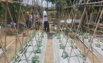 Adaptasi Teknologi Penyiraman, Sulap Jadi Sentra Pertanian Teintegrasi
