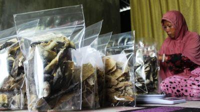 Melihat Produksi Kerupuk Berbahan Kulit Patin Dan Kakap Di Sumobito