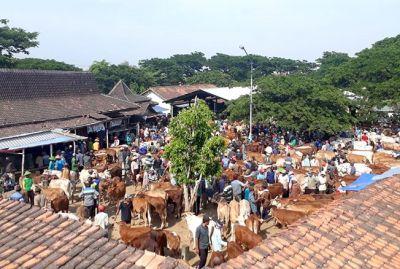 Tiga Pasar Hewan di Grobogan Butuh Perbaikan