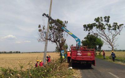 Pascputing Beliung Sukoharjo, PLN Kebut Perbaikan Tiang Listrik Ambruk