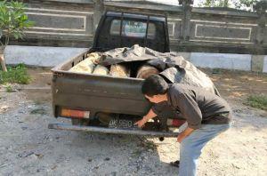 Tebang Puluhan Sonokeling di Hutan Lindung, Belasan Pelaku Ditangkap