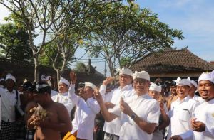 Wabup Suiasa Ikuti Tradisi Tabuh Rah Pangangon di Desa Adat Kapal