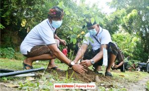 Wujudkan Hutan Desa, Tanam Pohon