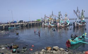 Kolam Labuh PPN Pengambengan Alami Pendangkalan, Nelayan Protes
