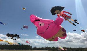 TEGAS! Covid-19 Naik, Kapolres Klungkung Batalkan Kawan Kite Festival