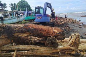 Banjir Bandang Terjang Jembrana, Perlindungan Kawasan Hutan Disorot