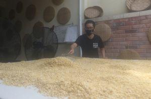 Manfaatkan Kedelai Lokal, Ubah Jadi Cookies Hingga Tempe Rasa Keju