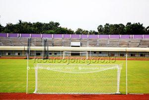 Direstui, Izin Jajal Stadion Bumi Wali