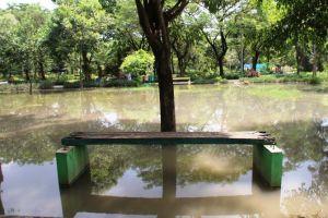 Berfungsi Sebagai Resapan Air, Taman Kebonratu Justru Selalu Tergenang