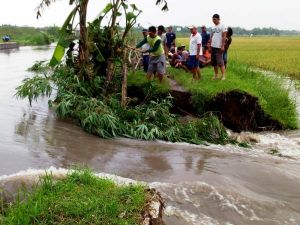 Tak Mampu Menahan Volume Air, Tanggul Sungai Jombang Barat Jebol