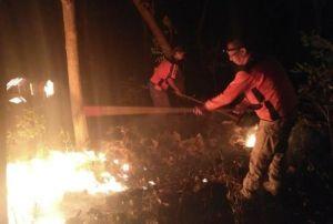 Giliran Hutan Ngetos yang Dilalap Api