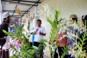 Kediri Lagi Horti Expo: Anggrek Silangan Papua Jutaan Rupiah