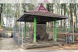 Lereng Utara Kelud, Kawasan Penting Sejarah Jawa (22)