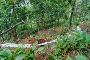 Pasang Tali Cegah Warga Mendekati Tanah Retak