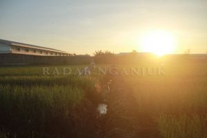 DPRD Bentuk Pansus Raperda RTRW 2021-2041