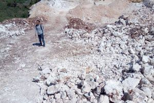 Tambang Ilegal di Kawasan Perhutani Dilaporkan Serimba Jateng