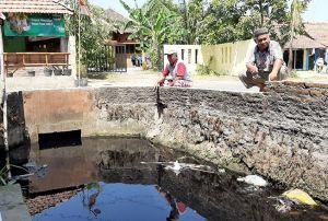 Kali Pendo Tercemar lagi, Warga Mejobo Protes Bau Busuk