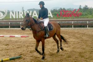 Bupati Haryanto Populerkan Olahraga Berkuda di Pati