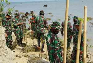 Peduli Lingkungan, Tentara Tanam Mangrove