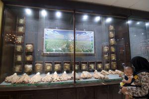 Usang, Tembakau dan Bungkus Rokok di Museum Kretek Dikonservasi