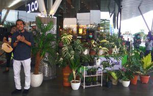 Pameran Flora, Hadirkan Ragam Tanaman hingga Edukasi Bercocok Tanam