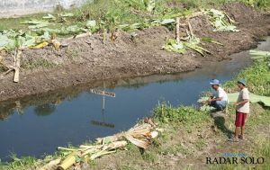 Kali Woro Diduga Tercemar Limbah