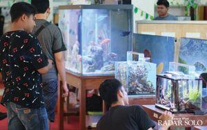Mini Zoo Hadir di Palur Plasa