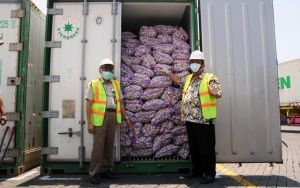 Impor 450 Ribu Ton dari Tiongkok, Stok Bawang Putih Dipastikan Aman