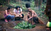 Terdapat 60 Bangunan Tradisional di Taman Nusa
