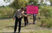 Kejari Eksekusi 3,5 Ha Tanah Mantan Bupati Candra