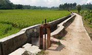 Pembangunan Infrastruktur Meningkatkan Produktivitas Pertanian