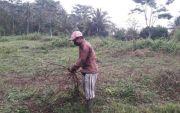 Bertahun-tahun Terkendala Air, Petani Subak Timuhun Minta Bendungan