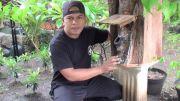Pandemi Covid-19, Penjualan Madu Kele-kele di Banjar Sakah Meningkat