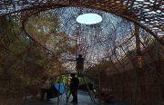 Keren, Nano Sukses Lahirkan Ulatan Bambu Siput Raksasa