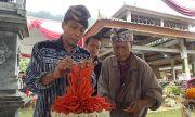 Harga Tinggi, Petani Cabai Kembangkan Cabai Lokal Berkualitas Bagus