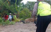 Hilang Kendali saat Turunan, Pasangan Ibu - Anak Terjun ke Rumah Warga