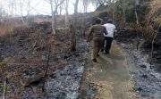 Belasan Hektare Lahan Terbakar, Api Mengarah ke Pura Puncak Sari