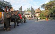 Satwa Langka Bali Safari & Marine Park Ikut Rayakan HUT RI ke 74