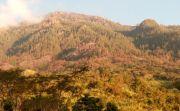 Kebakaran Meluas, 20 Ha Hutan di Lereng Gunung Agung Ludes Terbakar