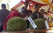 Penikmat Durian Tumpah Ruah, Durian Unggul Bakal Dikembangkan
