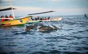 Dinas Pariwisata Klaim Kunjungan Wisman ke Buleleng Masih Stabil